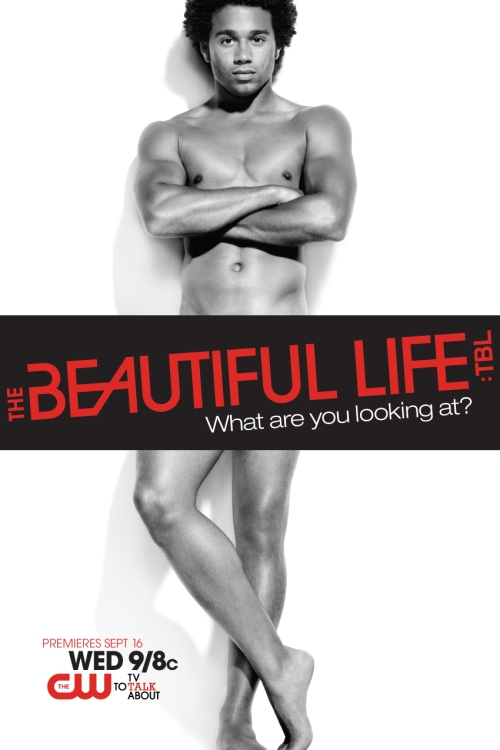 the-beautiful-life-3